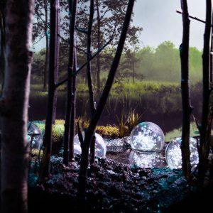 Diorama swamp