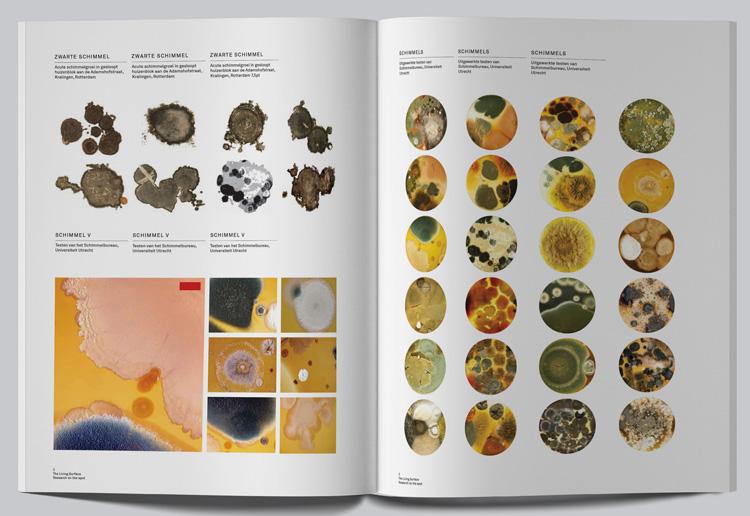 9789490322779_the_living_surface_an_alternative_biology_book_lizan_freijsen_03